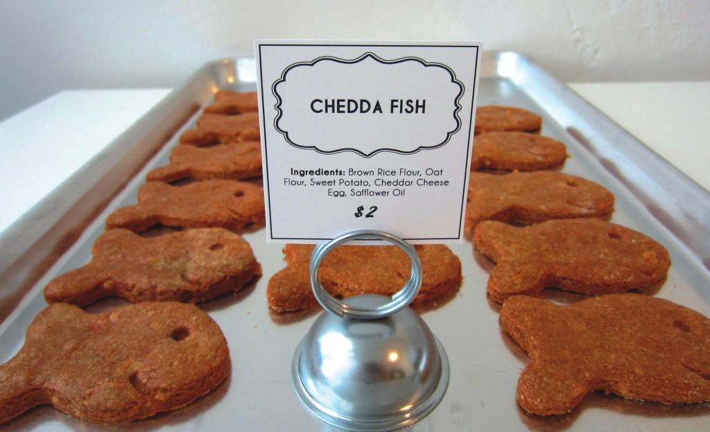 chedda fish