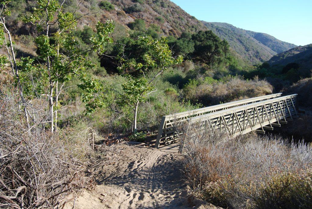 Emerald Canyon - credits to Laguna Canyon Foundation