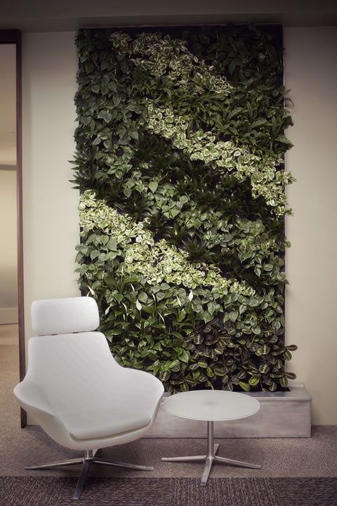 Living walls may feature a variety of plants, selected based on available light, to bring a touch of nature inside. | Photo by Gillian Crane Photography